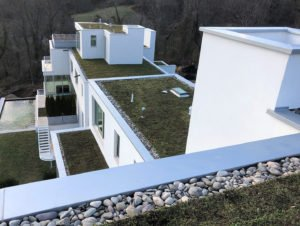 modern aesthetic green roofs